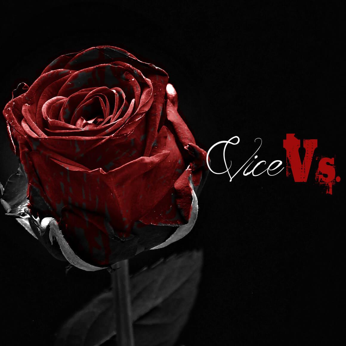 Vice Vs